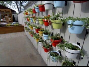 Un nuevo jardín con todo tipo de lujos