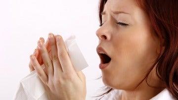 Alimentos contra la alergia