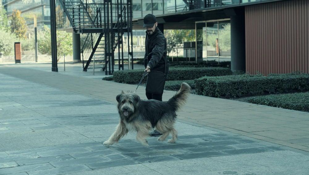 Chico, el perro capaz de percibir a los geonestésicos