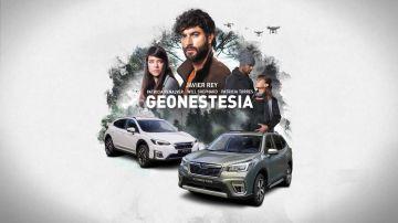 Descubre el cartel oficial de Geonestesia