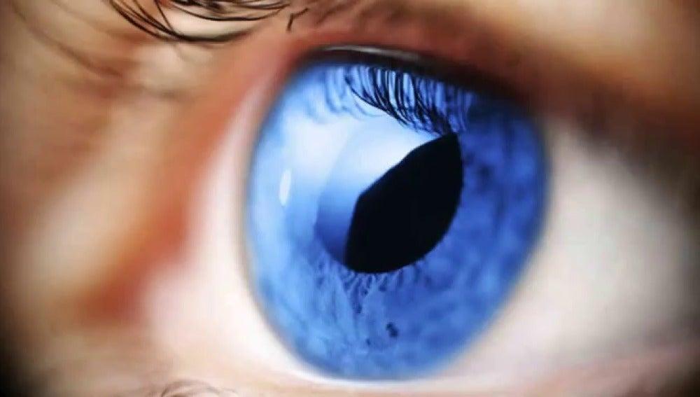 El glaucoma: la ceguera silenciosa