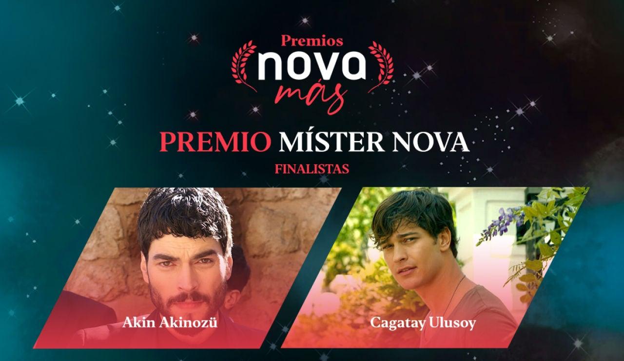 Mister Nova finalistas