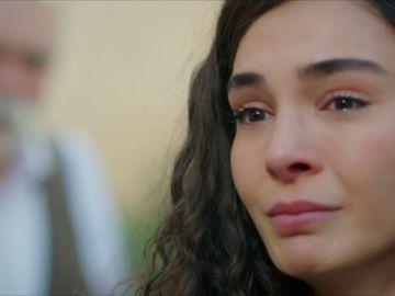"""Rayyan pone fin a su relación: """"Me divorcio de ti Miran Aslanbey"""""""
